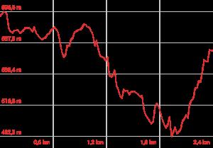 Profilo altimetrico Bosco monumentale del Sasseto